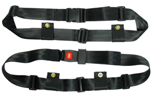 Picture of Seat Belts